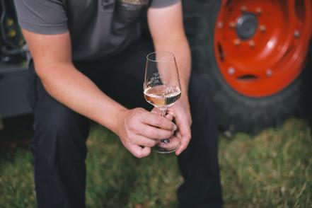 Weinprobe im Weinb