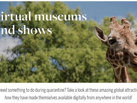 Virtual Museums and Shows to Keep You Inspired