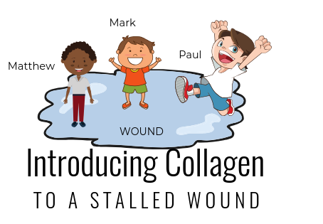 Introducing Collagen to a Stalled Wound