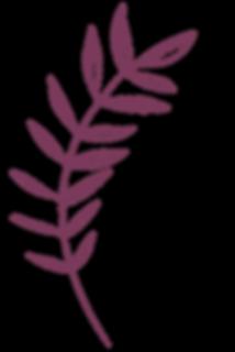bordo-countur-leaf-18.png