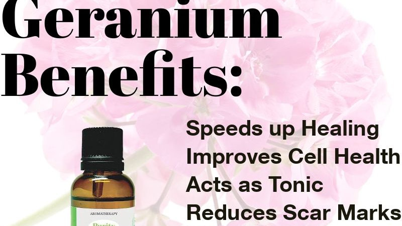 Geranium Essential Oil (30ml)