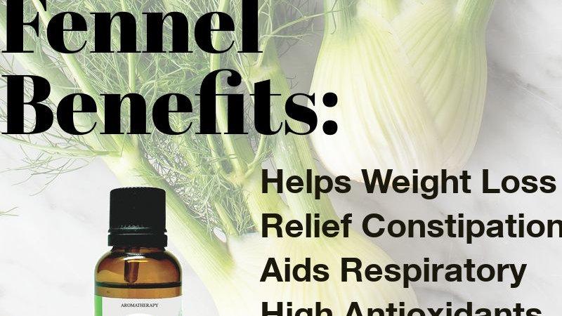 Fennel Essential Oil (10ml)