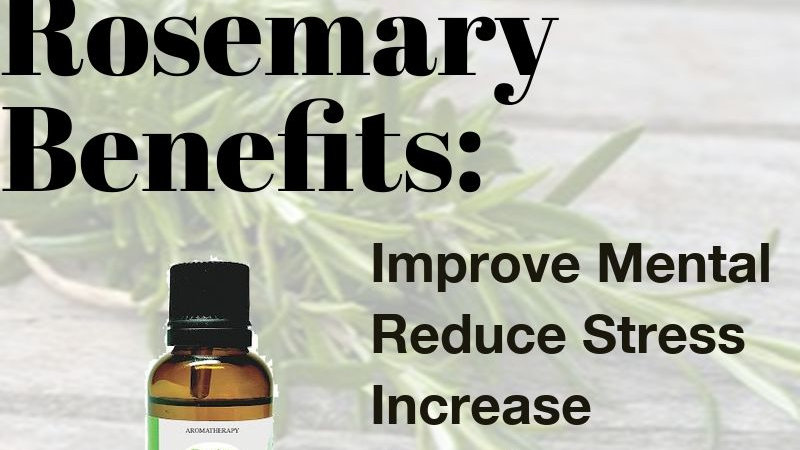 Rosemary Essential Oil (30ml)