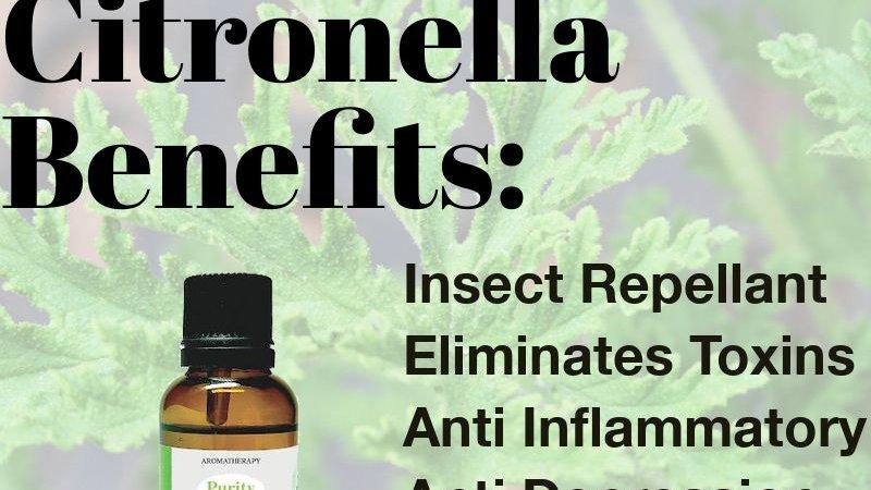 Citronella Essential Oil (30ml)