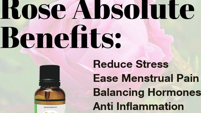 Rose Absolute Essential Oil (10ml)