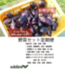 new夏の新規募集4.jpg