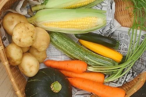 お試し野菜セット 4~5品