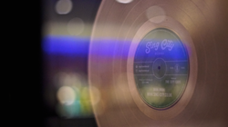 Platinum Record at Sing City
