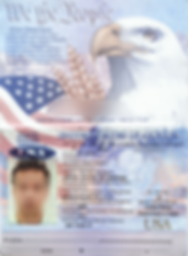 Government Issued ID.png