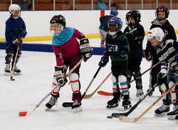 HockeyTrust08_220-50.jpg