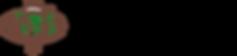 logo IFFS.png
