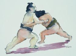 Sumo Series