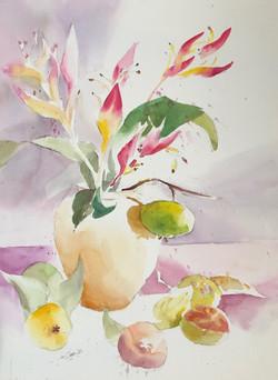 Parakeet Helekonia W/ Guava