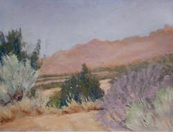 Sandia View