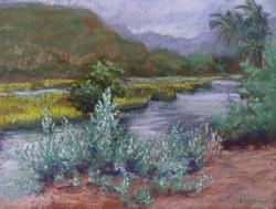 Hamakua Marsh