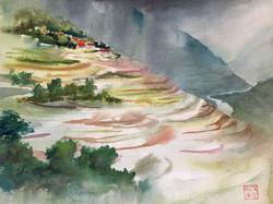 Rice Padies, Mountain Village, China