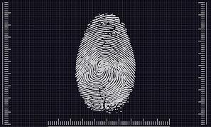 biometrics-4503187_1920.jpg