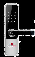 Zugangssystem SecurityHome -transparent.