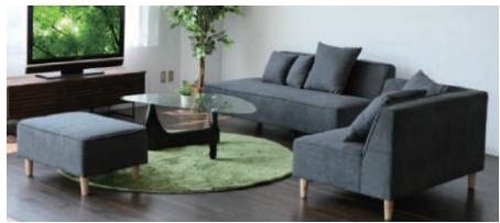 Modern sofa/ low sofa Famiyu