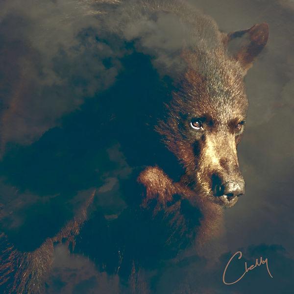 BearOnly.jpg