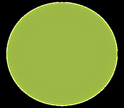 黄緑丸.png
