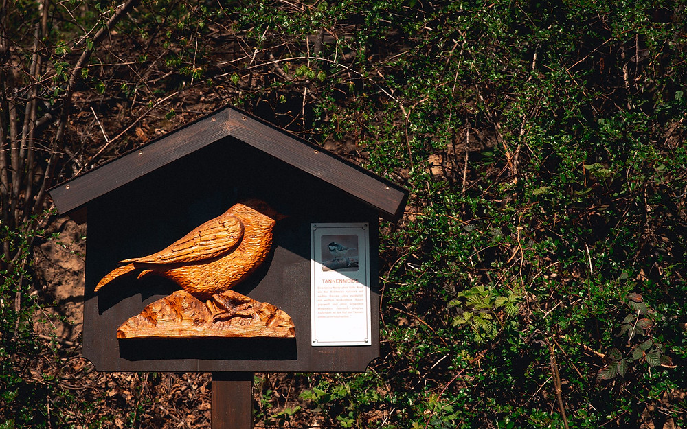 Wandern-mit-kindern-zillertal-vogelstation