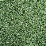Bermuda-Artificial-Turf.jpg