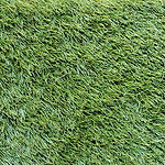 Evergreen-Artificial-Turf.jpg