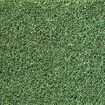 Kikuyu-Artificial-Turf.jpg