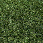 Buffalo-Artificial-Turf.jpg