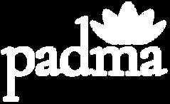 logo_frame.png