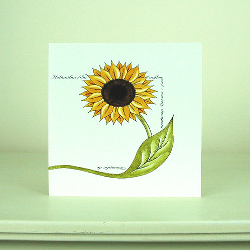 Sunflower Stem Card