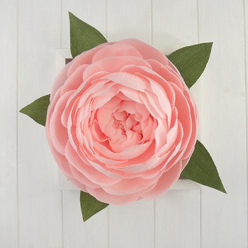 Framed Pink Wall Peony