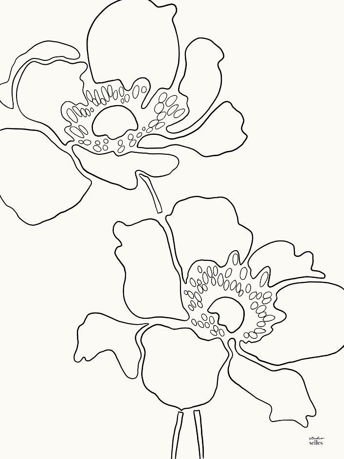 Poppy I.jpg