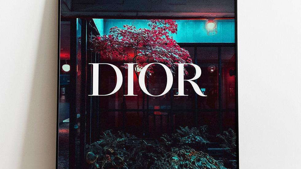 Dior Designer Image