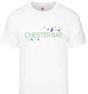 Chester Bay T Shirt Birds WHITE.jpg