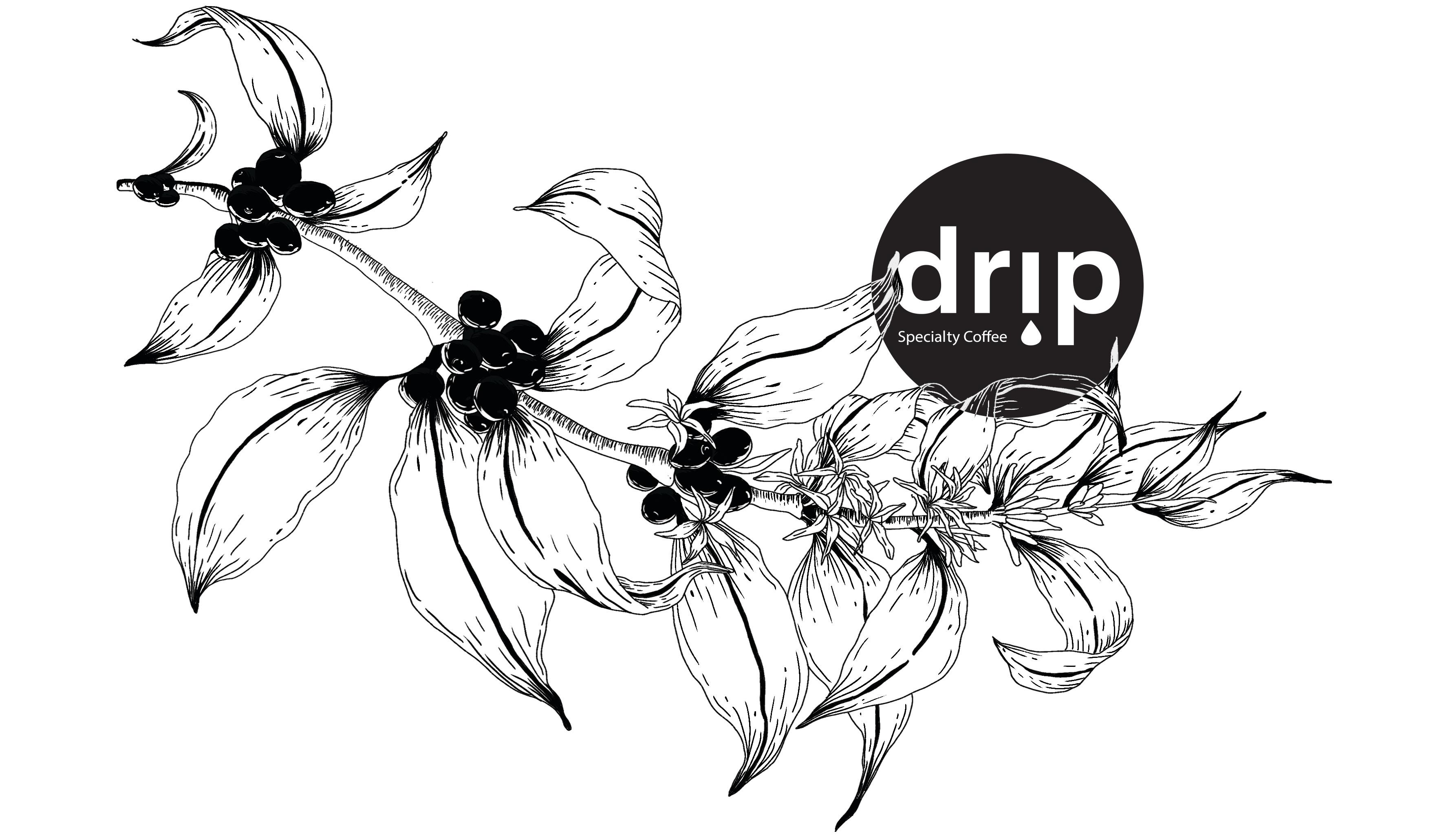 drip4