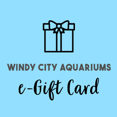 e-Gift Card ($10 Value)