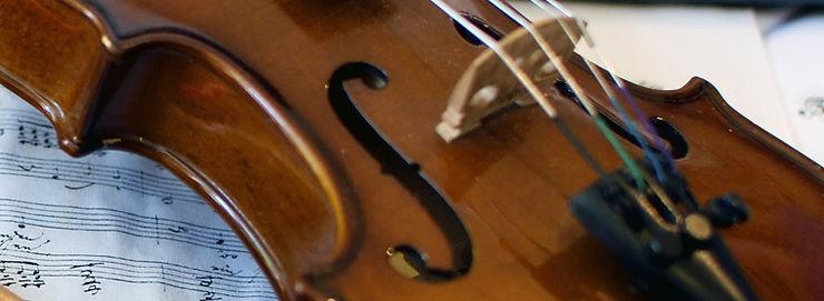 Janice Martin, Aerial Violinist