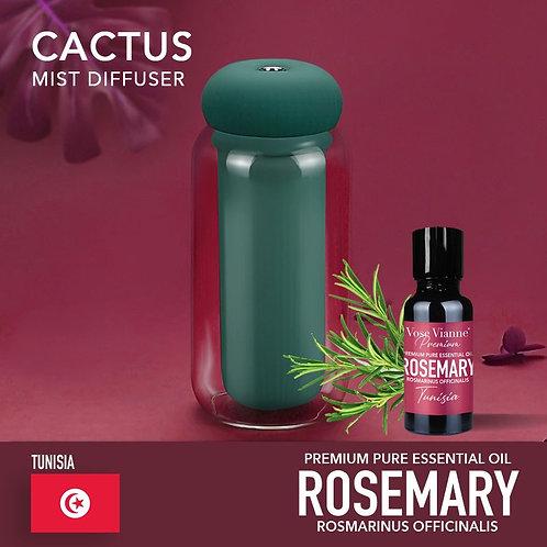Cactus Diffuser Set - Rosemary (Tunisia)