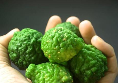 bergamot-fruit-leaf-isolated-e1559416267