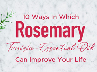 10 Ways In Which Vose Vianne Rosemary Essential Oil Can Improve Your Life