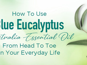 How to Use Vose Vianne Eucalyptus Essential Oil from Head to Toe in Your Everyday Life