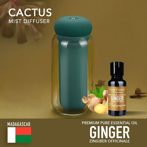 Cactus Diffuser Set - Ginger (Madagascar)