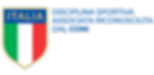 logo_dsa_2.png