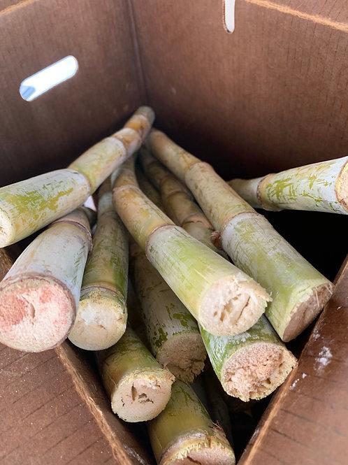 Koffi's Sugarcane Bundle