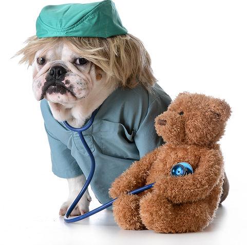 DOCTOR WITH BEAR.jpg
