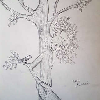 Tree Nymph and Bird Friend