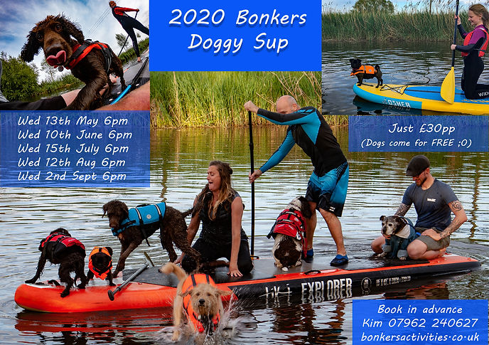 2020 Doggy SUP.jpg