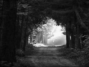 Tunnel of Light?